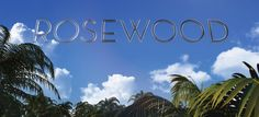 Click Here to Watch Rosewood Season 1 Episode 3 Online Right Now:  http://tvshowsrealm.com/watch-rosewood-online.html  http://tvshowsrealm.com/watch-rosewood-online.html   Click Here to Watch Rosewood Season 1 Episode 3 Online