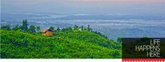 Visitbangladesh