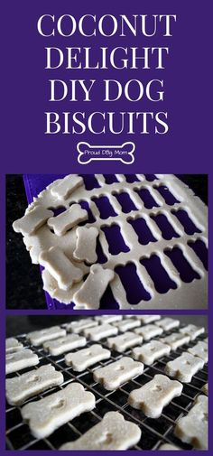 Coconut Delight DIY Dog Biscuits | Homemade Dog Treat Recipe | Gluten-Free Dog Treats #dogs #pets