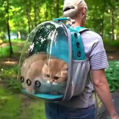 Funny Animal Videos, Cute Funny Animals, Cute Baby Animals, Animals And Pets, Cute Cats, Happy Animals, Funniest Animals, Animal Memes, Videos Funny
