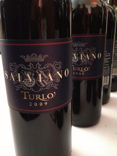 "2009 Tenuta di Salviano Turlo, a wine featured during Bern's Winefest in April 2013. Dubbed a ""Super Umbrian"" after the Italian region where it is grown, the Turlo mixes sangiovese, cabernet and merlot."