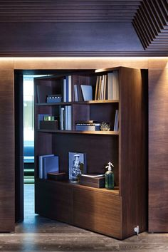Haptic Architects-pivot door joinery wall,clever