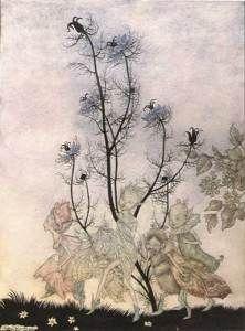 arthur-rackham-fairies_p