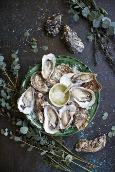 Oysters With Grapefruit-And-Gin Granita - Easy Recipes Seafood Dishes, Seafood Recipes, Food Porn, All I Ever Wanted, Food For Thought, I Foods, Food Styling, Food Inspiration, Love Food