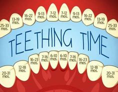 And Your Baby: Symptoms And Remedies Excellent teeting chart - when to expect to see those teeth!Excellent teeting chart - when to expect to see those teeth! Baby Trivia, Pinterest Baby, Baby Life Hacks, Foto Newborn, Newborn Care, Baby Care Tips, Baby Health, Kids Health, Baby Kind
