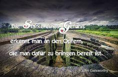 Weisheiten - quotes – Sammlungen – Google+
