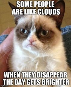 #GrumpyCat #meme Grumpy Cat™ stuff, gifts, coupons, quotes, meme on www.pinterest.com/erikakaisersot More