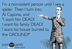 """I'm a nonviolent person until I see a spider. Then I turn into Al Capone and """"I want him DEAD! I want his family DEAD! I want his house burned to the GROUND!"""" lol so true Al Capone, I Want Him, I Love To Laugh, E Cards, Someecards, Funny Cute, That's Hilarious, Crazy Funny, True Stories"""