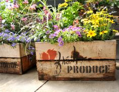 Turn a wooden box into a blooming garden!