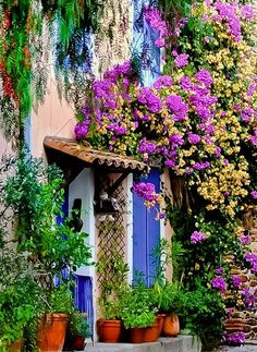 Grimaund, Provence, France