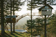 Cinder Cone Treehouse in Washington