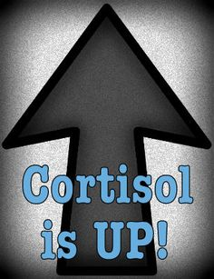 Having HIGH CORTISOL can be just as bad as having low! Here's what thyroid patients have learned about high cortisol and how to treat it. Types Of Thyroid, Thyroid Issues, Thyroid Cancer, Thyroid Gland, Thyroid Disease, Thyroid Problems, Addison's Disease, Adrenal Health, Adrenal Fatigue
