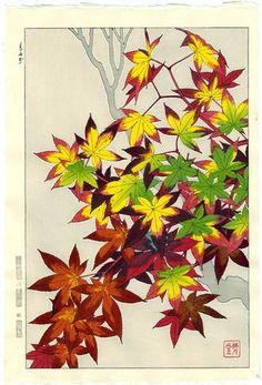 KAWARAZAKI SHODO Woodblock Print JAPANESE MAPLE 1954