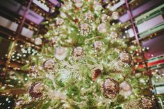 Christmas Wedding at the Four Seasons Toronto Hotel, Christmas tree, green, gold, silver, lights. ©Ryan Flynn Photography. www.ryanflynnphotography.net