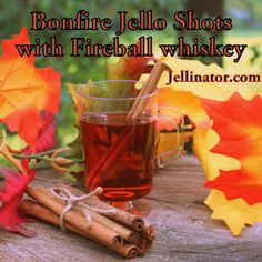 Fall Jello Shots and Party Recipes Fireball Jello Shots, Fireball Recipes, Fireball Whiskey, Jello Shot Recipes, Drink Recipes, Party Recipes, Yummy Shots, Yummy Drinks, Yummy Food