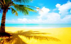 #Beach #Beautiful #Scenery