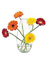 Tall Artisan Stem Vase - flower vase Showcase your favorite blooms in the teardrop-shaped Tall Artisan Stem Vase. Crafted with care by Colombian artisans, with 6 small holes that hold a single stem each, so your arrangement can extend out as well as up!