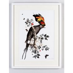 Find Lear Gaukur 03 (Small) by Kristjana S Williams online. Choose from thousands of contemporary artworks from exciting artists expertly-vetted by Rise Art's curators. Buy art online with confidence with free art advisory. Art And Illustration, Illustrations, Icelandic Artists, S Williams, Rise Art, Collage Artwork, Butterfly Art, Butterflies, Oui Oui