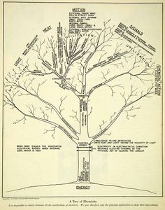 The myth of popular culture why highbrow lowbrow dont work tree diagram from scientific american 1926 illustrating a tree of electricity a bolt of lightning can pass through a tree on the way to the ground ccuart Gallery