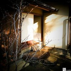 """Autumn sunlight and exit of waiting room of tea house in Sakai.  I ain't listen to Nat King Cole's """"The autumn leaves""""at here... . Do you like #matcha? I ama #master of #Japanese #zen #teaceremonywho have already entertained over 3000 guests by #tea #ceremony through my life. I am also only one #professional provider of#private tea ceremonyfor #traveller to Japan. When you visit Japan and wish a special #travel #experience of the deepest Japanese #traditional #culture you got to contact me…"""