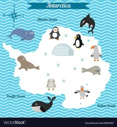Cartoon map of antarctica continent with different animals. colorful cartoon illustration for children and kids. antarctica mammals and sea life. Geography For Kids, Maps For Kids, Montessori, Continents And Oceans, Preschool Curriculum, Cross Stitch Baby, Cute Animal Videos, Illustration, Kids Rugs