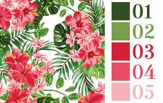 Color Palette - Tela Papel Tijeras