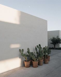 Le plus récent Écran mediterranean Style Architectural Réflexions Exterior Design, Interior And Exterior, Outdoor Spaces, Outdoor Living, Natural Interior, Desert Plants, Nature Plants, Green Nature, Garden Inspiration
