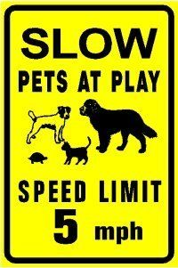SLOW PETS AT PLAY dog cat turtle animal sign by Texsign. Save 20 Off!. $20.00. Long Lasting. Easy to install. GREAT Gift idea. Brand New Sign. MADE IN USA. SLOW PETS AT PLAY SIGN. A BRAND NEW sign!! Made of thick aluminum and tough vinyl lettering and graphics. This sign is 12in. wide and 18in. tall - the same size as official signs. This is a novelty sign made like an official sign. Can be used outdoors or displayed indoors. Comes with two holes pre-punched for easy mounting, corners are…