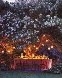 Magical tea party on a summer night in a cottage garden