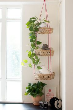 Vertical hanging baskets gets your crap off the floor without taking up any valuable shelf or wall space. Make a DIY basket and string them up! Diy Hanging, Hanging Baskets, Hanging Plants, Hanging Mugs, Photo Hanging, Hanging Storage, Storage Hacks, Storage Solutions, Storage Ideas