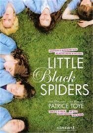 België 1978. Katja, Roxy en een stel andere levenslustige meisjes zijn te jong voor de liefde en al bijna moeder. Op een verborgen plek wachten zwangere tienermeisjes in het geheim hun bevalling af. Little Black Spiders is een fictief verhaal, geïnspireerd op waargebeurde feiten die zich in de jaren '70 afspeelden in België.