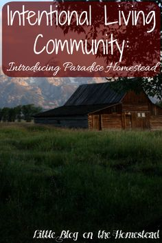 Intentional Living Community - http://www.littleblogonthehomestead.com/intentional-living/