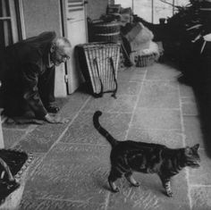 What do Charles Bukowski, Joyce Carol Oates, and Edgar Allan Poe have in common? They love cats. Writers and cats go together like salt and pepper, and here are 16 of our favorite pairs.