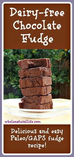 Miss fudge? Get this easy recipe for healthier, dairy-free chocolate fudge. It's Paleo/GAPS-friendly and sweetened with honey!