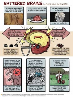 How Head Injuries Damage the Brain: Scientific American #brain #childinjuries