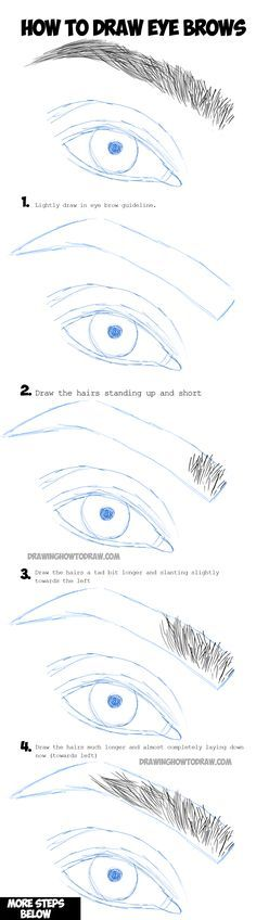 Learn How to Draw Eye Brows Step by Step Drawing Tutorial