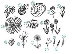 video showing you how to draw 15 different flowers AND a printable practice sheet! Vine Drawing, Tulip Drawing, Plant Drawing, Deco Miami, Zine, Dandelion Drawing, Different Kinds Of Flowers, Simple Flowers To Draw, White Flowers