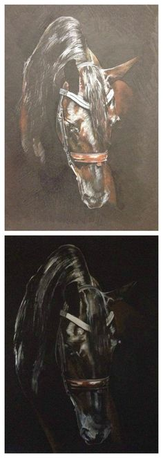How to paint a horse from sketch to signature with Tony O'Connor (Step 1 and 2) whitetreestudio.ie