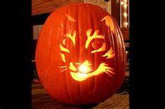 Halloween cat, looks great!