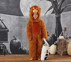 Shop Halloween costumes for kids at Pottery Barn Kids. Discover quality character costumes, animal costumes and more. Adult Costume Ideas Diy, Toddler Halloween Costumes, Halloween Night, Diy Costumes, Halloween Kids, Adult Costumes, Halloween Clearance, Baby Orangutan, Animal Costumes
