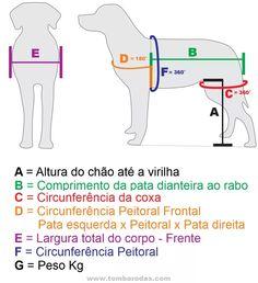 Cadeira De Rodas - Cão E Gato - Pequeno Porte - Até 8 Kg - R$ 249,90 em Mercado…