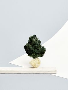 """Concrete Nature"" - set design and art direction by Camille Boyer - photography by Jack Johnstone"