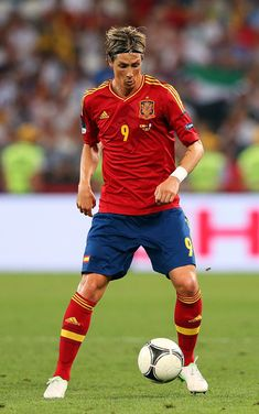 Fernando Torres (Spain)