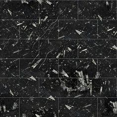 Textures Texture seamless | Fossil black marble tile texture seamless 14127 | Textures - ARCHITECTURE - TILES INTERIOR - Marble tiles - Black | Sketchuptexture