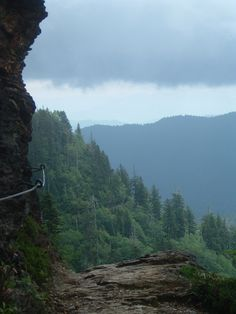 ✔ Great Smoky Mountains, Tennessee & North Carolina, USA