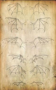 Wing Set by ~Kevin-Studios on deviantART