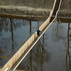 The invisible bridge: Caminando sobre el agua