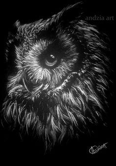 ##owl##