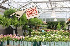 Touring Music City, Part 2 - Lawn & Garden Retailer Garden Shop, Lawn And Garden, Home And Garden, Succulent Pots, Succulents, Garden Center Displays, Plant Nursery, Plant Sale, Photo Displays