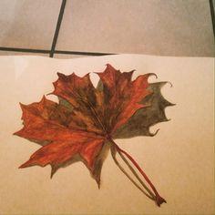 Als PO student kijk ik vooral naar de schoonheid van de natuur! Hierbij het blad van een boom geschilderd met aquarel!